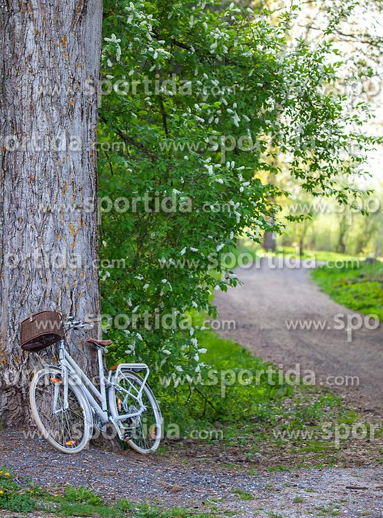 THEMENBILD - ein Fahrrad lehnt an einem Baumstamm vor einem Waldweg, aufgenommen am 28. April 2018, Kaprun, Österreich // a bicycle leans against a tree trunk in front of a forest road on 2018/04/28, Kaprun, Austria. EXPA Pictures © 2018, PhotoCredit: EXPA/ Stefanie Oberhauser