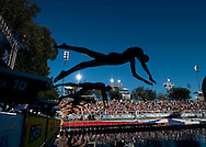 Swimmers dive off the blocks at the USA Swimming Nationals held at Stanford, California.
