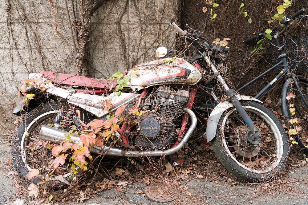 with weeds overgrown abandoned motorcycle Tokyo Japan