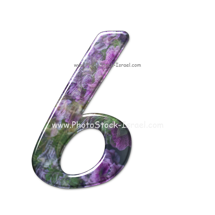 The number Six Part of a set of letters, Numbers and symbols of 3D Alphabet made with a floral image on white background