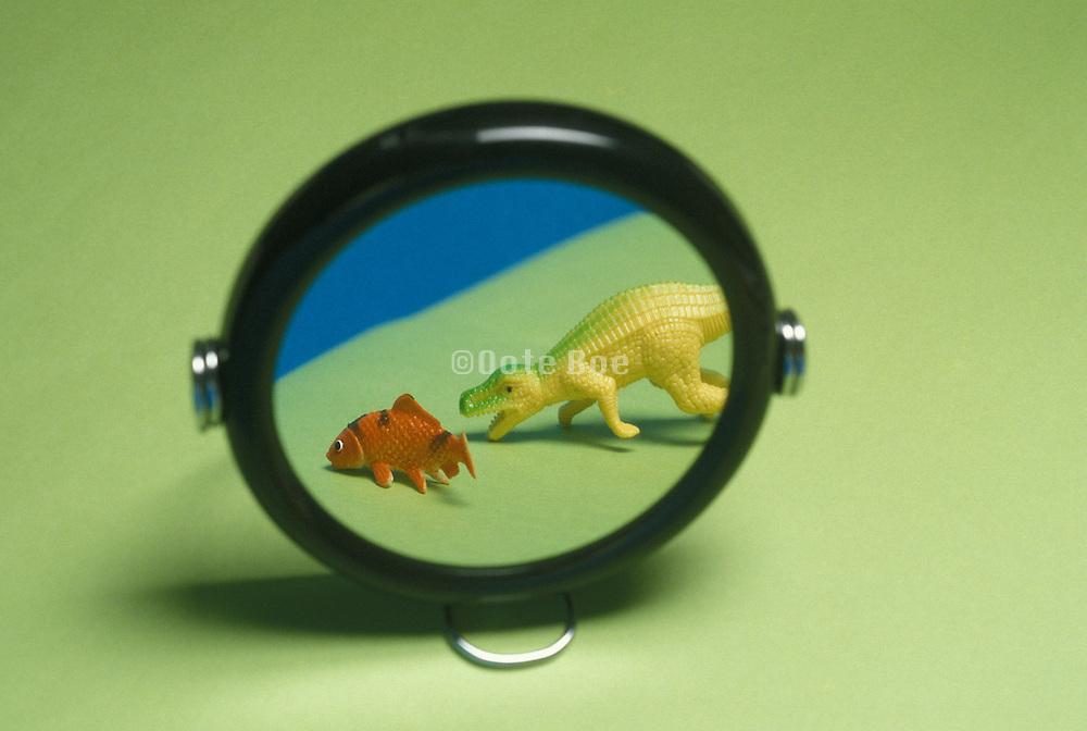 toy dinosaur and fish in mirror