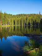 The morning sun falls gently onto Horseshoe Lake, deep in the Clearwater National Forest, Idaho, United States.