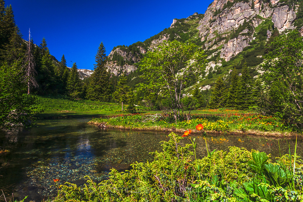 Small river in Rila Mountain at springtime