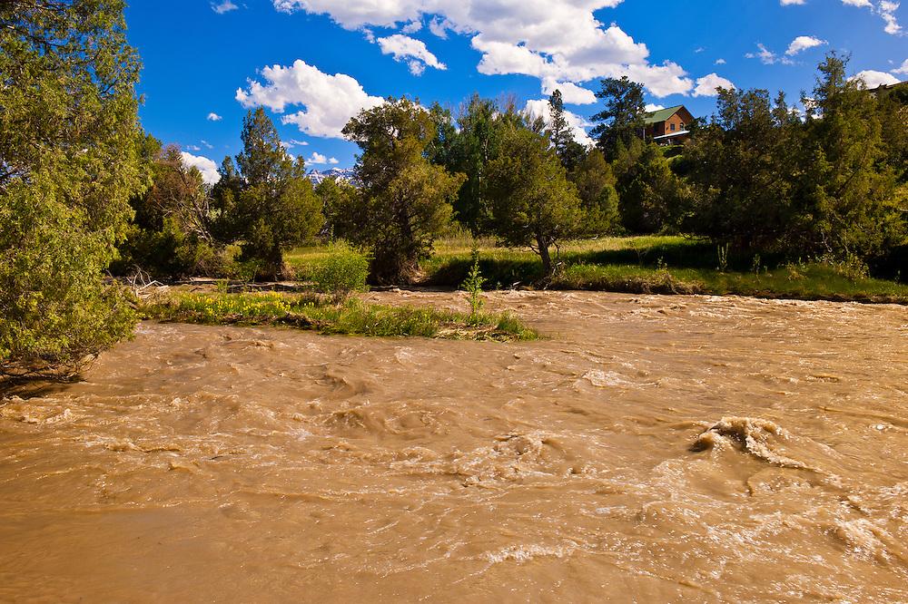 Uncompaghre River, Ridgway, Colorado USA