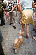 woman walking her dog in packed street with a little child looking on