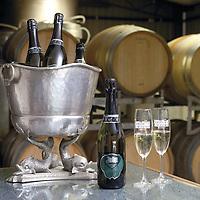 Underground Wines