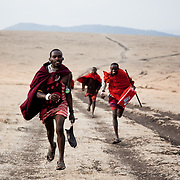 It is mainly Maasais who live in the Loita Hills up above the Serengeti plains. They live in small villages and communities called bomas and live mainly of raising and selling live stock such as cattle and goats. Its a very remote region in Kenya, hard to get to without a four wheel drive with very little infrastructure and up till 2010 no mobile phone network. The Maasais are well known though out Kenya and the world for their colorful clothing and their way of keeping their old traditions alive...With very little traffic and no public transport coming across a potential lift is precious. The three men has been to the cattle market in Ilkering and are walking back home, a good 6 hour walk. The pick-up truck run by S.A.F.E is almost fully loaded and only the front man gets his much wanted lift.