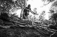Lumpeno Lepalo gathers firewood on Mount Kulal, Kenya. MR #31