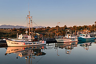 Fishing boats docked in the Scotch Pond mooring at Garry Point Park in Richmond, British Columbia, Canada.