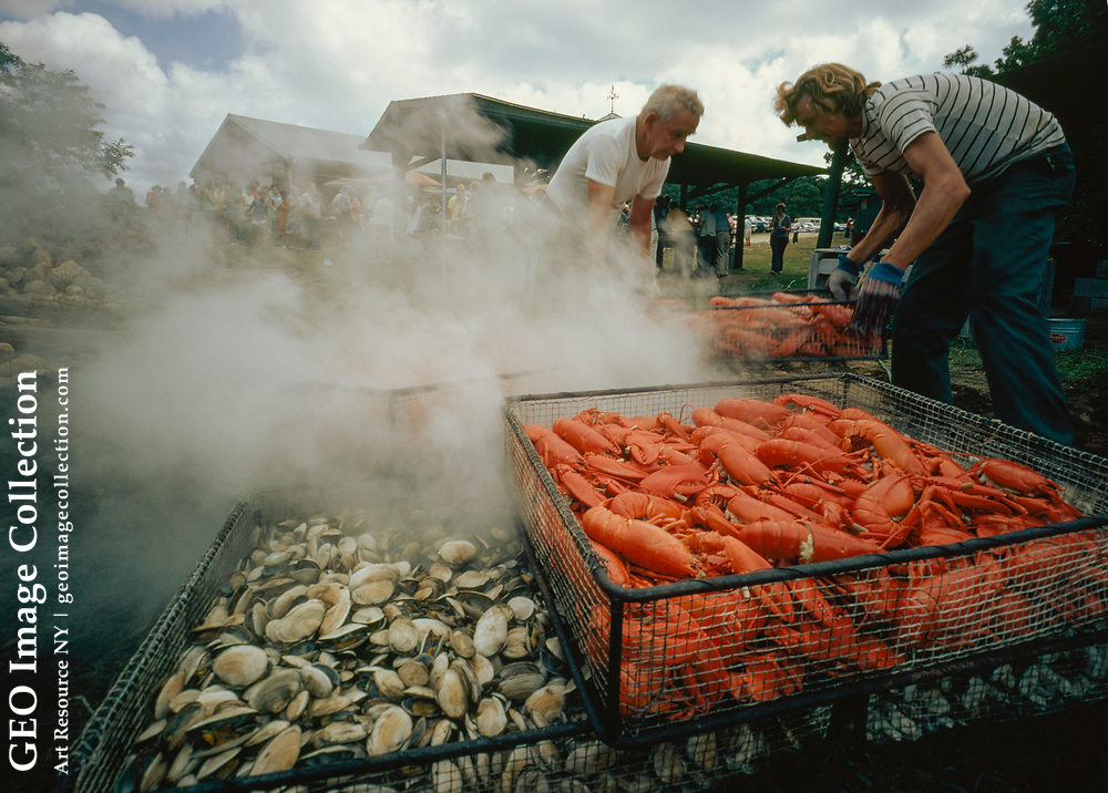 Lobsters & clams steam over hot rocks & seaweed at an annual clambake.