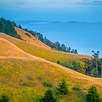 Grassy pastures and patchy forest on the western slopes of Mount Tamalpais lead down to the Pacific Ocean, just north of San Francisco in in Marin County, California.