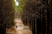Mountain bike riders make their way through the Lebanon forest during the 2011 ABSA Cape Epic multi-day stage race. Image by Greg Beadle Global sport and corporate event photography by Greg Beadle. Greg captures the energy and emotion of international events including the World Economic Forum, Tour de France, Cape Epic MTB and the Cape Town Cycle Tour
