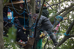 Aylesbury Vale, UK. 6th October, 2020. Daniel Marc Hooper (r), better known as Swampy, joins fellow anti-HS2 tree protectors in and around a makeshift tree house about sixty feet above ground at a wildlife protection camp in ancient woodland at Jones' Hill Wood. The Jones' Hill Wood camp, one of several protest camps set up by anti-HS2 activists along the route of the £106bn HS2 high-speed rail link in order to resist the controversial infrastructure project, is currently being evicted by National Eviction Team bailiffs working on behalf of HS2 Ltd.
