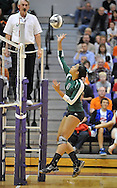 The Elyria Catholic varsity volleyball team battled Dalton in a regional semi-final contest at Barberton High School on November 2, 2011.