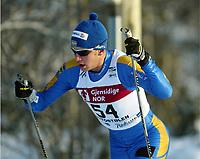 Langrenn, 22. november 2003, Verdenscup Beitostølen, Anders Södergren, Sverige