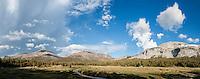 Mt. Dana and Mt. Gibbs rise above meadow near Tioga pass, Yosemite national park, California, USA