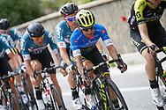 Johan Esteban Chaves (COL - Mitchelton - Scott) during the 101th Tour of Italy, Giro d'Italia 2018, stage 11, Assisi - Osimo 156 km on May 16, 2018 in Italy - Photo Luca Bettini / BettiniPhoto / ProSportsImages / DPPI
