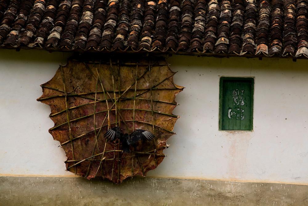 Santa Maria do Salto_MG, Brasil...Couro de gado secando em frente a uma casa em Santa Maria do Salto, Minas Gerais...The cattle leather drying in front the house in Santa Maria do Salto, Minas Gerais...Foto: LEO DRUMOND / NITRO