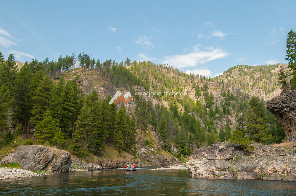 Sweep boat on the Middle Fork of the Salmon River, Idaho.