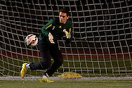Mansfield Christian vs Elyria Catholic boys varsity soccer on October 29, 2014. Images © David Richard and may not be copied, posted, published or printed without permission.