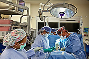 William DeShazer/Staff<br /> Dr. Mark Liberman, right, performs a single site, belly-button gallbladder surgery on his patient, Socorro Padilla, with Surgical Technicians Zoraima Padilla, middle, and Vielka Jaen, after using the daVinci robot at the Physicians Regional – Pine Ridge campus on Monday Nov. 19, 2012.