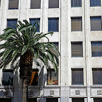 USA, California, Los Angeles. First National Bank of Hollywood building and palm tree.