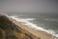 A gray day in May atop the coastal bank at Ballston Beach in Truro.