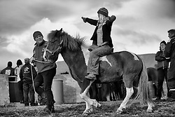Laufskalarett in Hjaltadal is the most popular horse corral in Iceland. Every year thousands of guests comes and take part in this great event. - Stóðréttir í Laufskálarétt