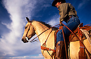 Western Stock style saddle by Dave and Roy Salge, Vera Earl Ranch, Sonoita, Arizona.©1991 Edward McCain. All rights reserved. McCain Photography, McCain Creative, Inc.