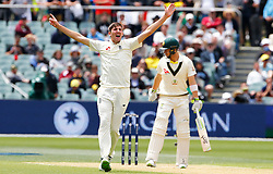England's Craig Overton appeals unsuccessfully for the wicket of Australia's Tim Paine during day two of the Ashes Test match at the Adelaide Oval, Adelaide.