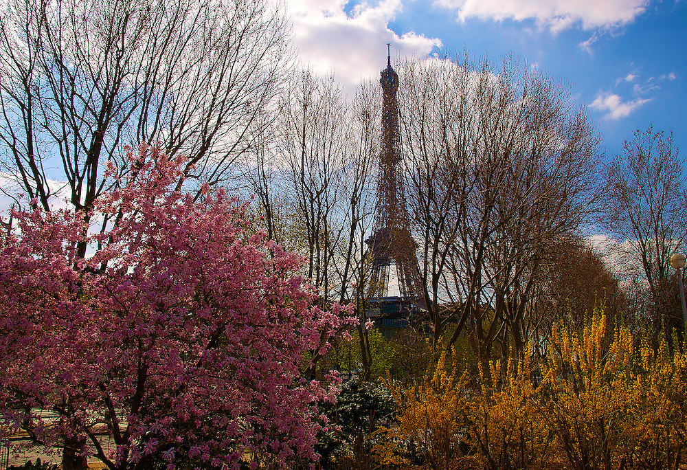 The Eiffel Tower is one of the most recognizable man-made structures in the world.  The tower is about the same height as an 81 storey building.