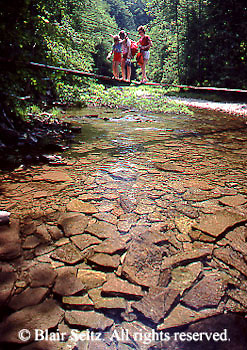 PA landscapes, Creek, Hikers, Swinging Bridges