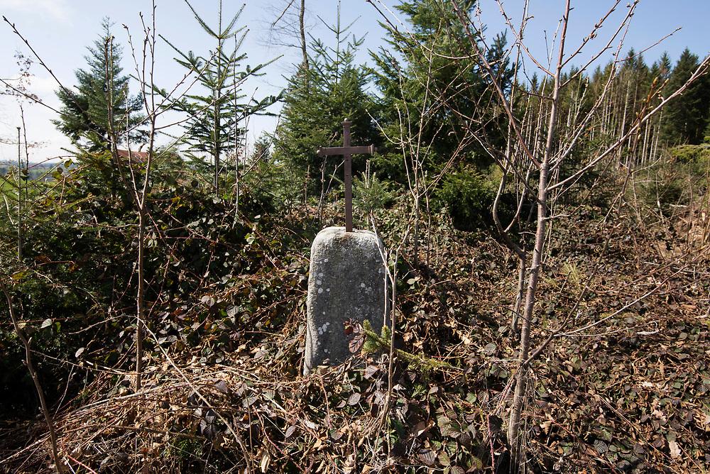 22.03.2020; Wilfingen (D); Kreuz bei Wilfingen, Gemeinde Dachsberg<br /> (Steffen Schmidt)