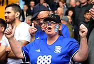 a Birmingham city fan looks on. EFL Skybet championship match, Aston Villa v Birmingham city at Villa Park in Birmingham, The Midlands on Sunday 23rd April 2017.<br /> pic by Bradley Collyer, Andrew Orchard sports photography.