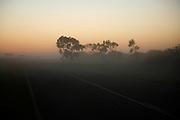 Dawn fog near Carnavon.