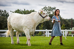 © Licensed to London News Pictures. 08/07/2019. Harrogate UK. TV presenter Anita Rani who is broadcasting a two part series from the Great Yorkshire show walks a Charolais cow. The 161st Great Yorkshire show starts tomorrow in Harrogate.. Photo credit: Andrew McCaren/LNP