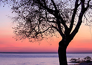 A tree in silhouette during the pre dawn sunrise at the Straits of Mackinac near the Old Mackinac Point Lighthouse, Mackinac City Michigan, USA