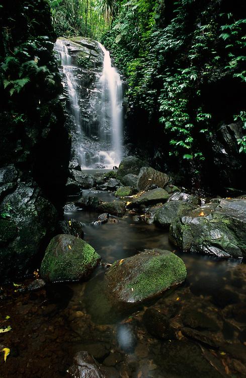 Box Log Falls, Lamington National Park
