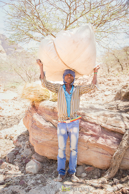 Boy with straw bundle, Near Hawzen Town, Gheralta area, Tigray, Ethiopia, Horn of Africa