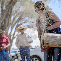 Leanna Tipton competes the chainsaw competition during the Homesteaders Reunion Saturday in Fence Lake.
