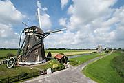 De Drie Molens bij Leidschendam en Stompwijk, vlak bij Den Haag - The Three Mills near The Hague, Netherlands