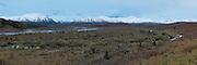The Alaska Range above the Savage River valley, Denali National Park, Alaska