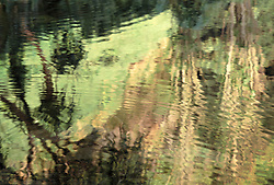 Abstraction of Hawaiian jungle reflection on the surface of a river on Maui