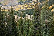 Guardsman Pass, Utah