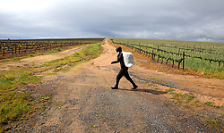 South Africa - Cape Town - 28 August 2020 - Man walking home before it rains again, the dark rain clouds in the background in Lynedoch. - Picture: Brendan Magaar/African News Agency(ANA)