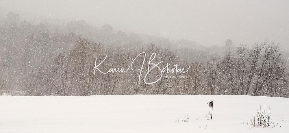 Winter scene in Labonte's Field, Gilford, NH.   © 2014 Karen Bobotas Photographer