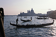 Gondoliers in St. Mark's lagoon. In the distance is The Basilica di Santa Maria della Salute (Basilica of St Mary of Health/Salvation), commonly known simply as the Salute, is a famous church in Venice, Italy. Placed scenically at a narrow finger of land which lies between the Grand Canal and the Bacino di San Marco on the lagoon, visible as one enters the Piazza San Marco from the water. While it has the status of a minor basilica, its decorative and distinctive profile and location make it among the most photographed churches in Italy...Subject photograph(s) are copyright Edward McCain. All rights are reserved except those specifically granted by Edward McCain in writing prior to publication...McCain Photography.211 S 4th Avenue.Tucson, AZ 85701-2103.(520) 623-1998.mobile: (520) 990-0999.fax: (520) 623-1190.http://www.mccainphoto.com.edward@mccainphoto.com.