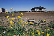 Silicon Valley, California; farms to factories: moving a house from new business park near San Jose airport to make room for commercial buildings.