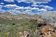 The Badlands, Dinosaur Provincial Park, Alberta, Canada