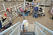 Riders get ready before the start of the CPRA Rodeo at the Boulder County Fairgrounds on Sunday. Go to timescall.com for more photos.<br /> <br /> Matthew Jonas / Staff Photographer Aug. 2, 2015